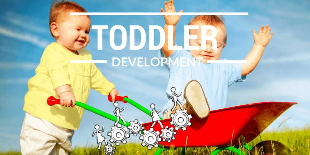 Toddlers All about toddler development